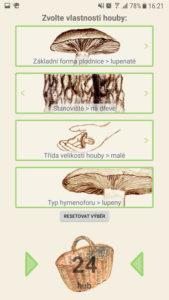 Klíč k určování hub